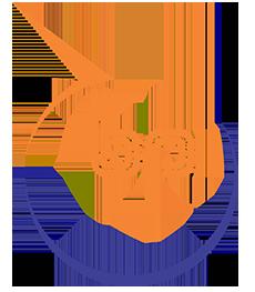 Bashir Pipe Industries (Pvt) Ltd